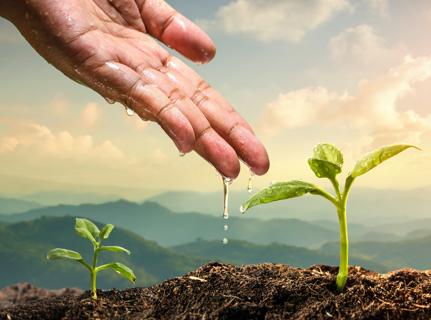 Saiba mais sobre nossas ações ambientais